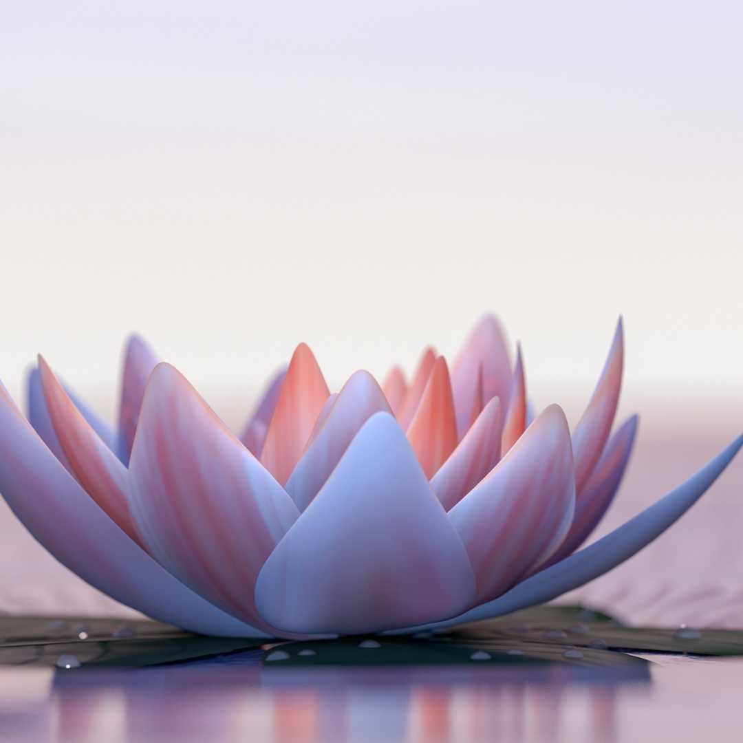 mantras intention