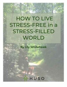 stress_free_guide