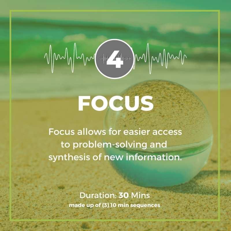 focus program huso