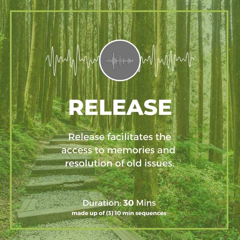 release program