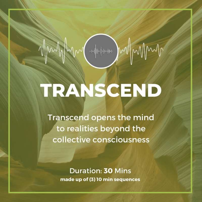 transcend program