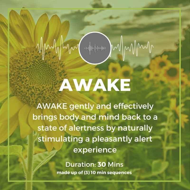 awake_program